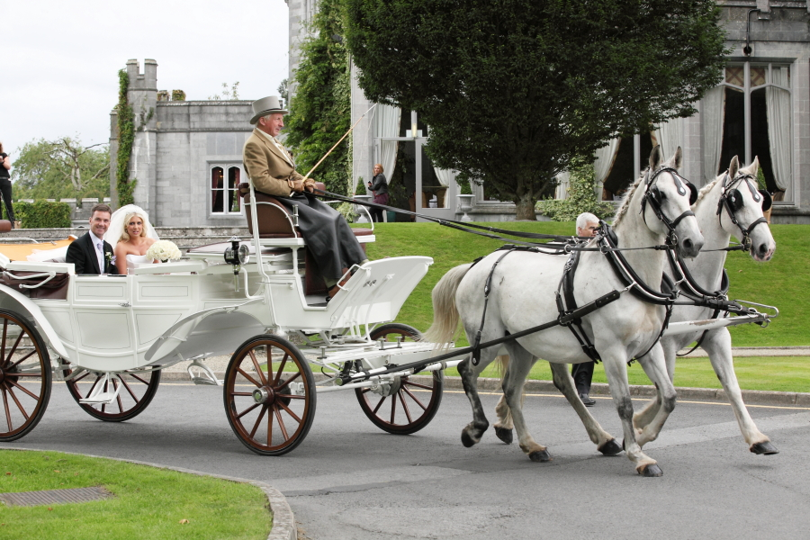 horse-drawn carriage, wedding transport, white horses, bride, wedding