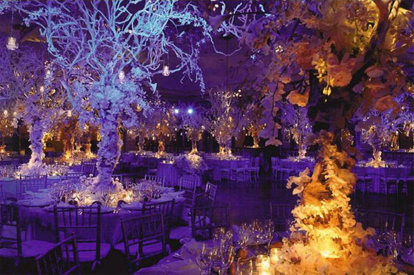 reception set up white trees